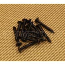 006-2440-049 (12) Genuine Fender Deluxe Black Neck Screws 0062440049
