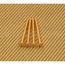 GS-0005-002 (4) Gold Neck Plate Screws