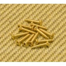 006-1010-049 (12) Genuine Gretsch Guitar Gold Bezel Ring Screws 0453G 0061010049