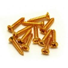 GRETSCH GOLD BEZEL MOUNTING SCREWS