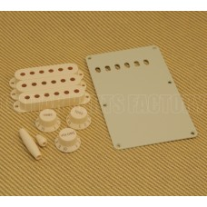 099-1368-000 Fender Aged Stratocaster Guitar Accessory Kit 0991368000