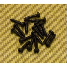 GS-3376-003 Pack of 16 Black Small Tuner Screws for Guitar/Bass