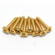 GS-3397-002 Humbucker Ring Short Gold Screws