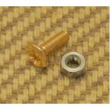 PL3010GD Gold Pickguard Bracket Screw & Nut