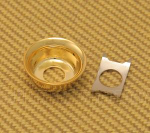 AP-0275-002 Gold Cup Jack Plate for Tele
