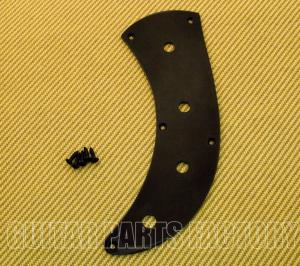 "PBTP-B Black Custom ""No Pickguard"" Control Plate for P Bass & Similar"